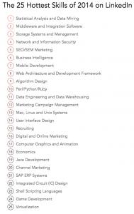 """TOP 25 profesionalūs """"LinkedIn"""" įgūdžiai 2014 m. SEO pateko į TOP 5!"""